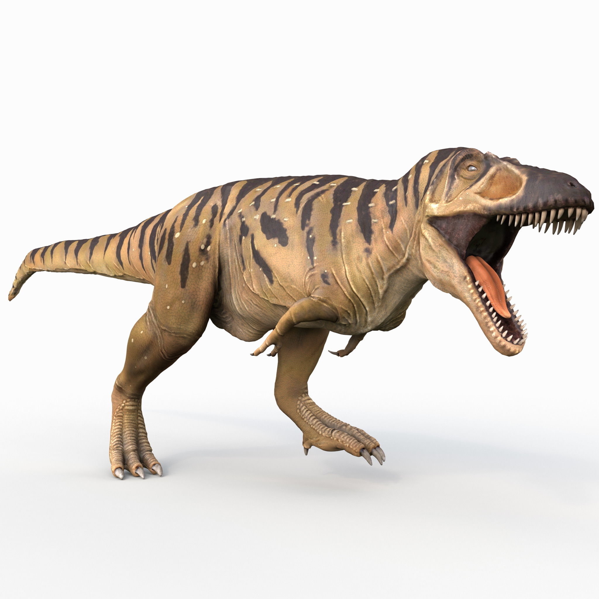 Tarbosaurus Pose 2_2.jpg