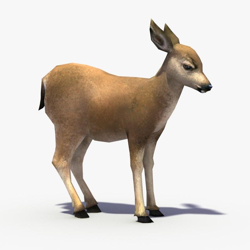 deer_fawn_signature.png