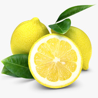 lemon 3D models
