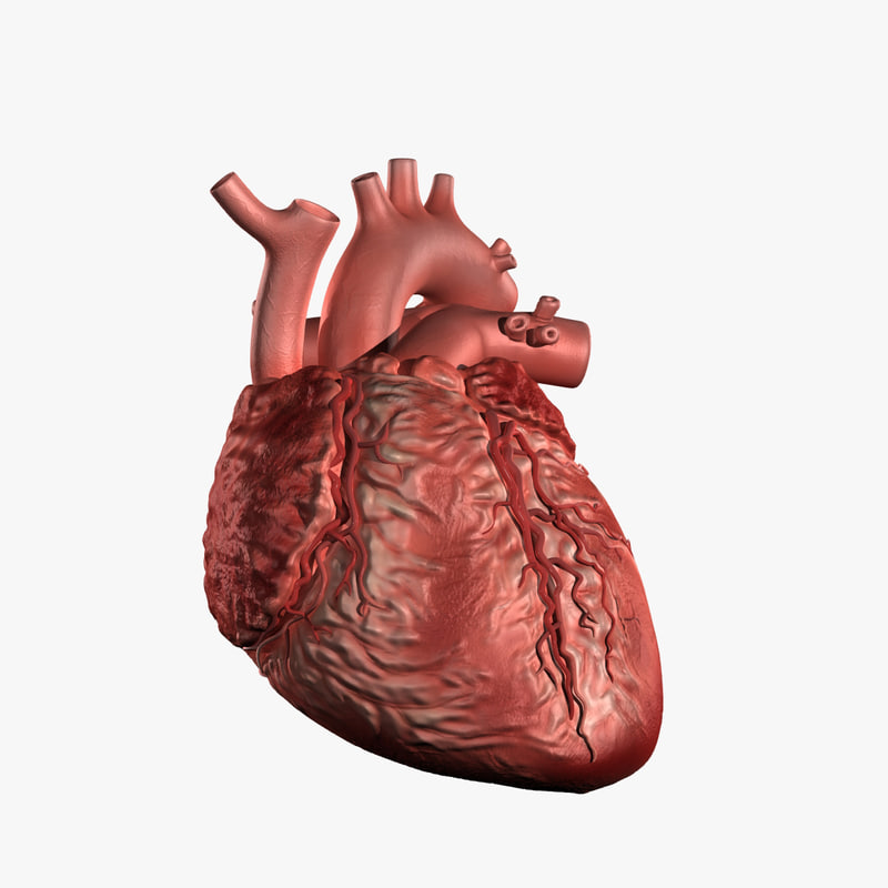 heart1-white.jpg