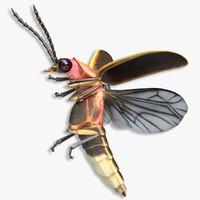 firefly 3D models