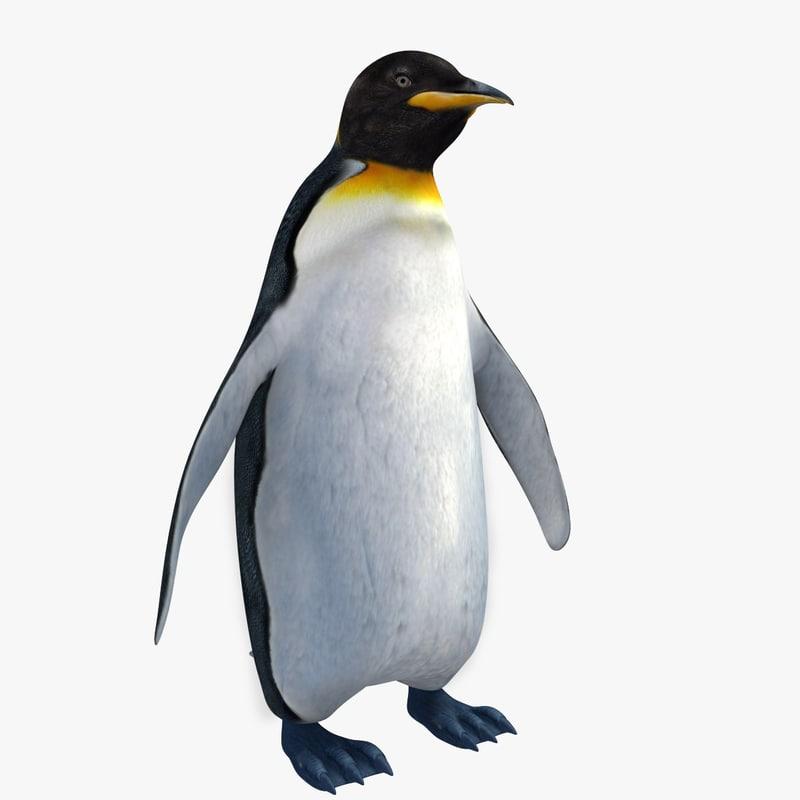 Penguin_00_P.jpg
