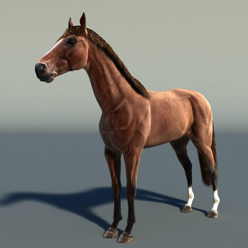 Horse_02_Sig_Vray.jpg