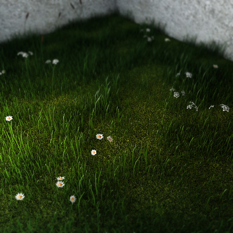 field of grass 02ps.jpg