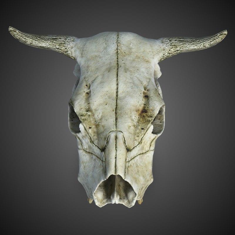 CowSkull_CheckMate-4.jpg