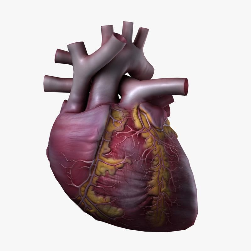 heart_1_1_1.jpg