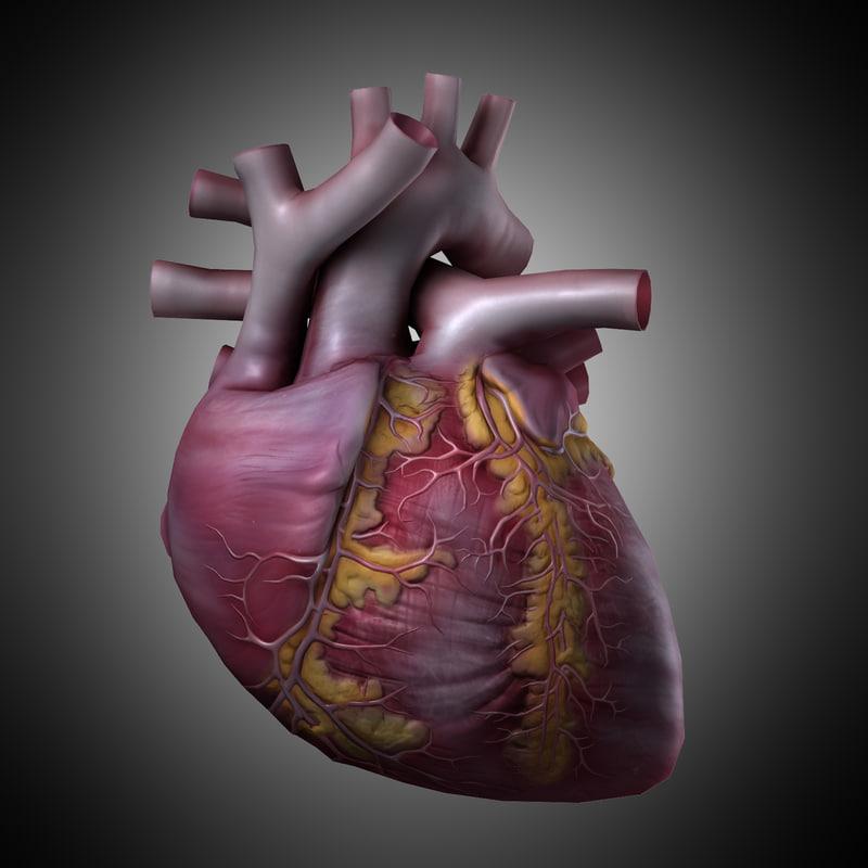 heart_1_1_2.jpg