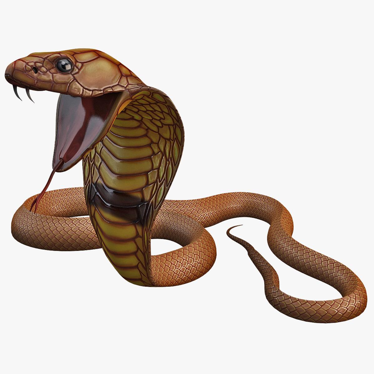 Snake_Cobra_Pose_4_000.jpg