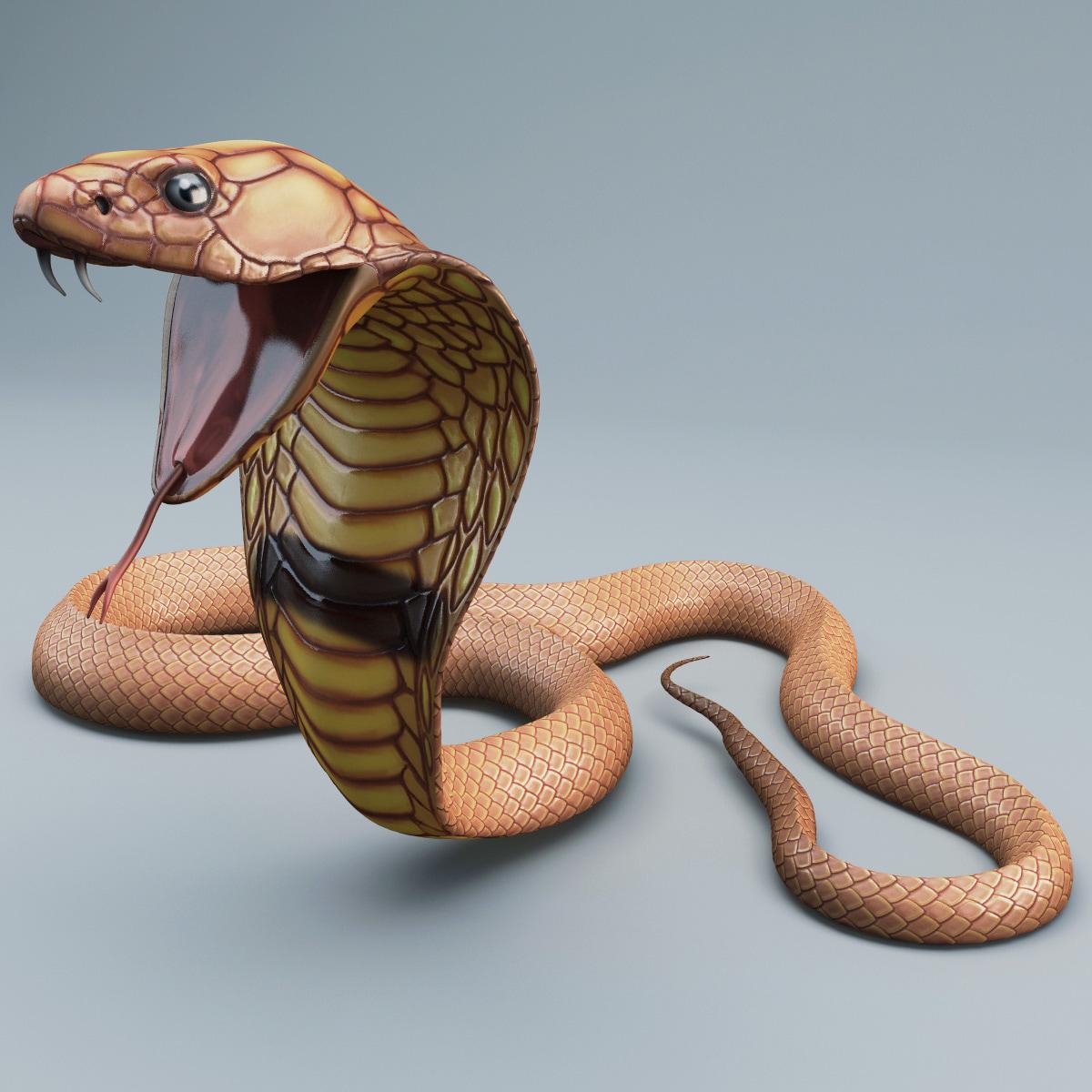 Snake_Cobra_Pose_4_002.jpg