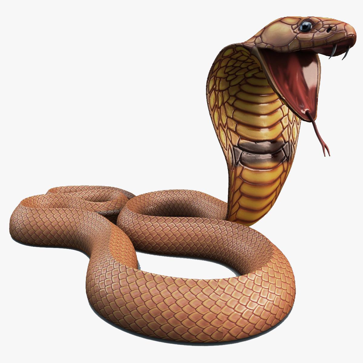 Snake_Cobra_Rigged_000.jpg