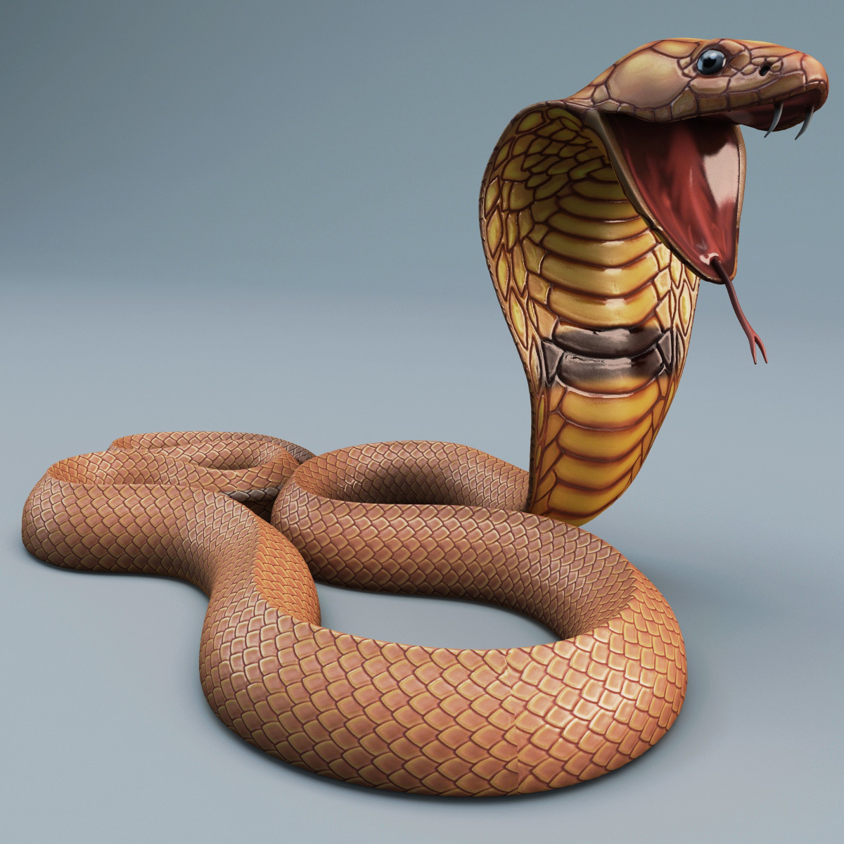 Snake_Cobra_Rigged_001.jpg