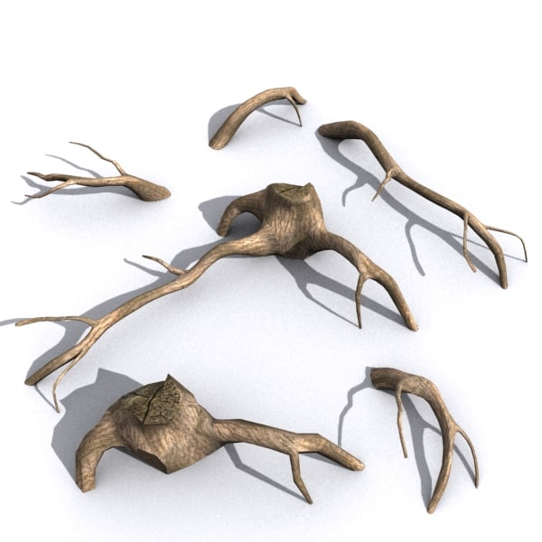 Tree Roots Driftwood 3 3D Models