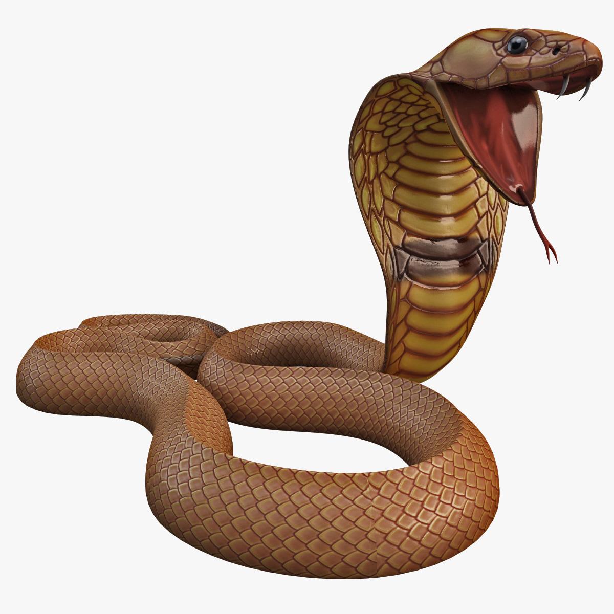 Snake_Cobra_Pose_5_000.jpg