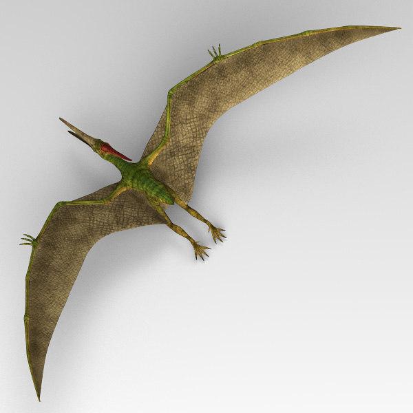 Pteranodon_02.jpg