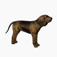 Bloodhound 3D models