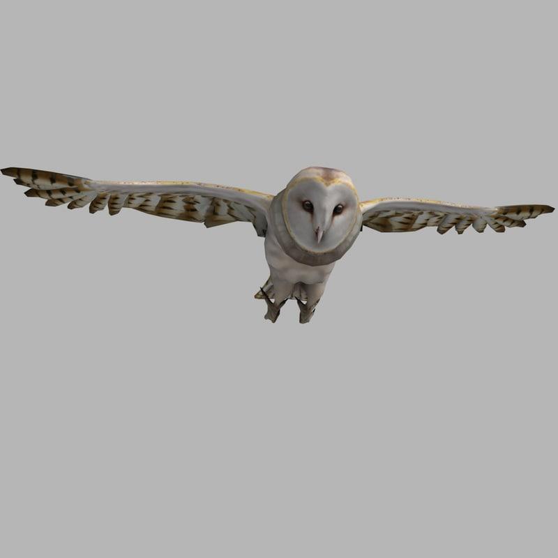 Barn Owl (RIGGED)
