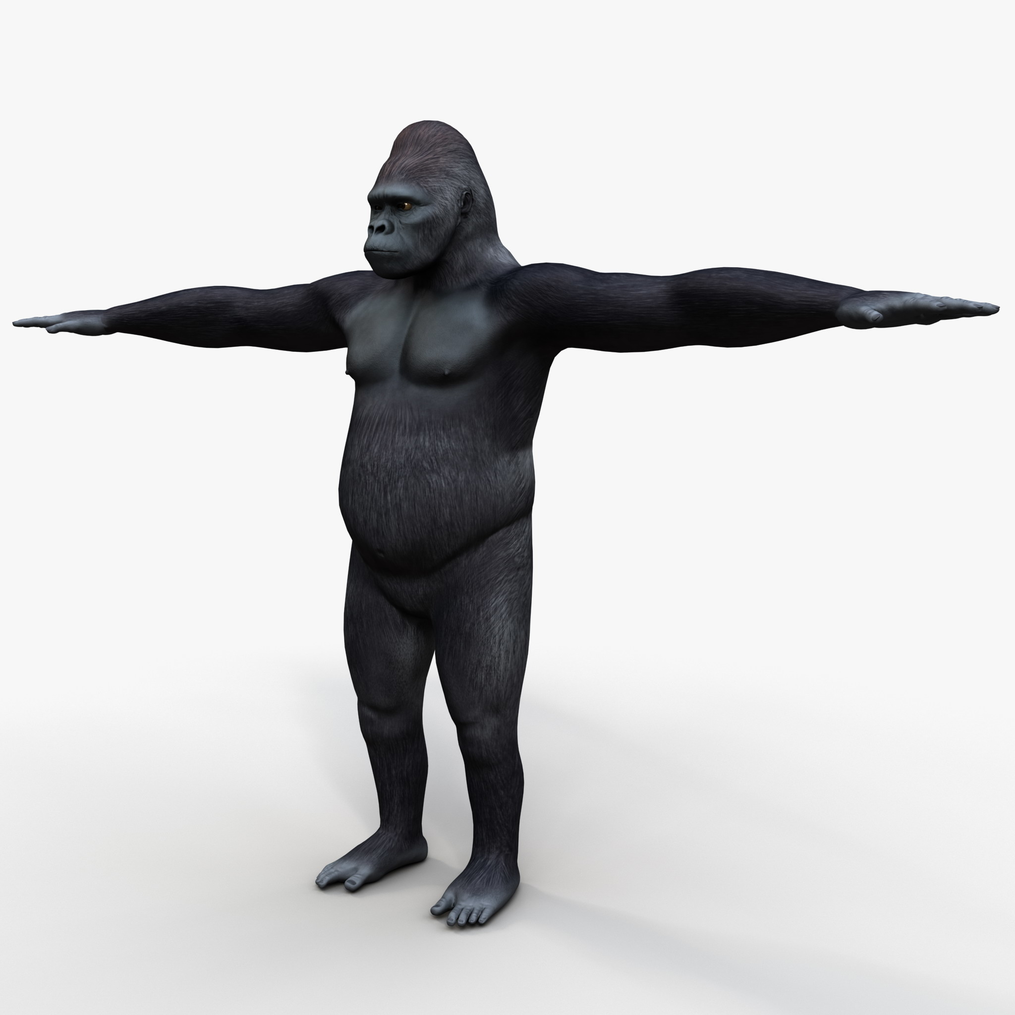 3d sex gorillas nude download