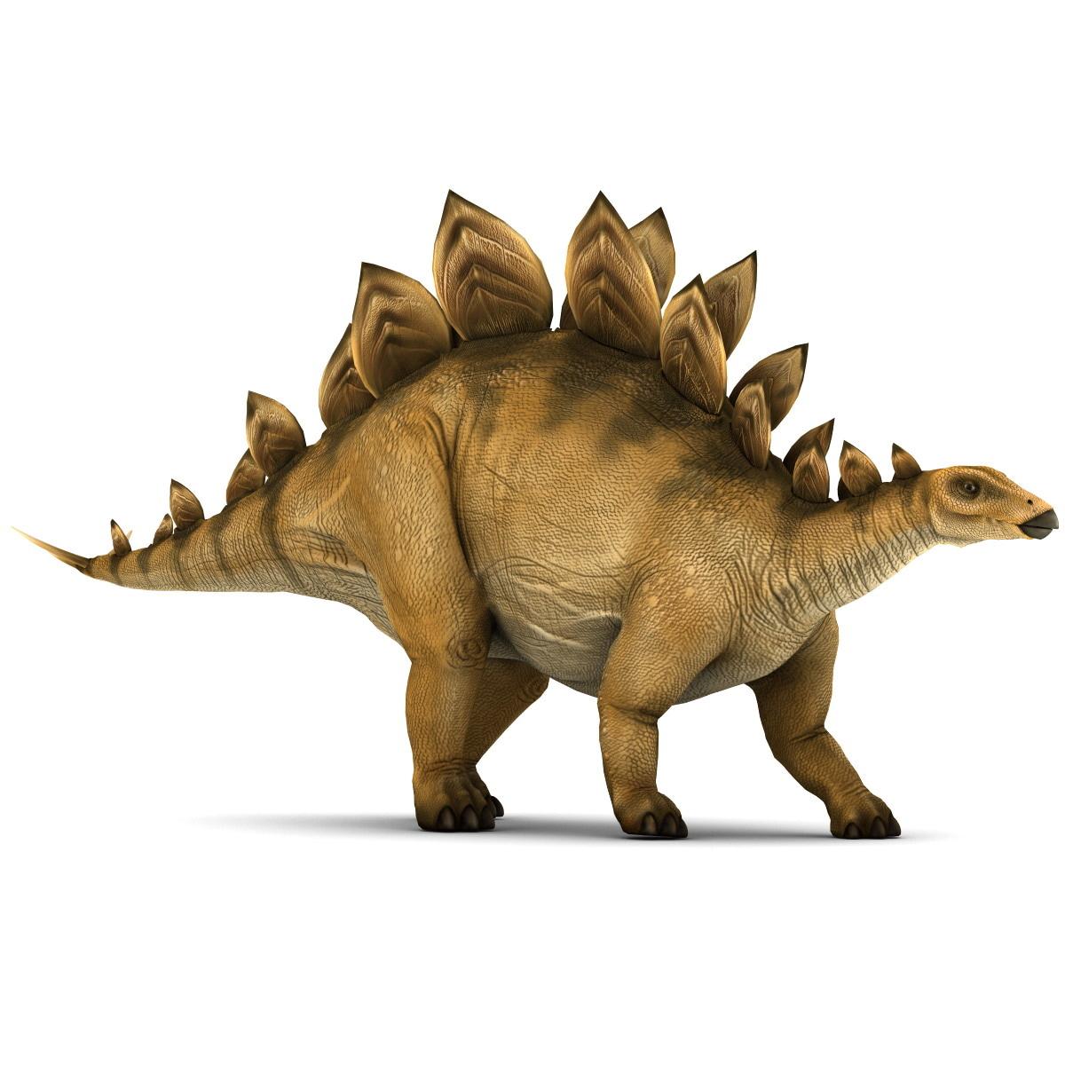 Stegosaurus Pose 1