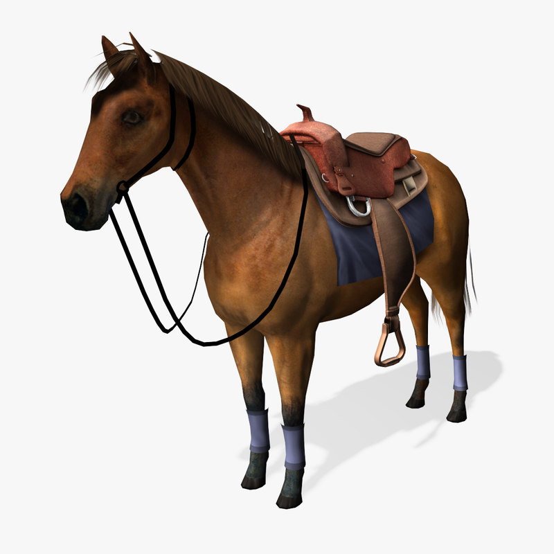 horse-preview-02.jpg