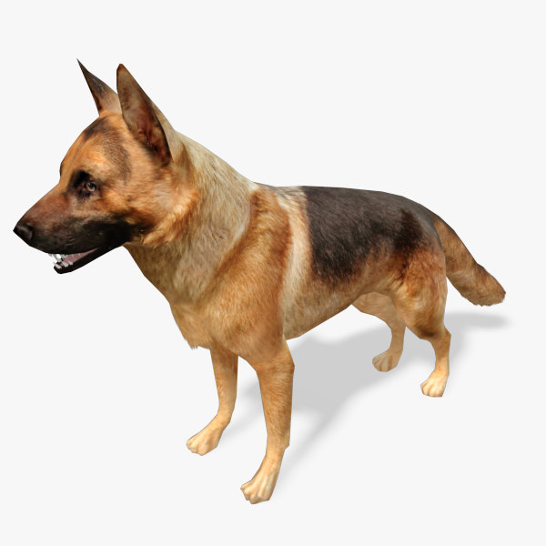 german-shepard-preview-01.jpg