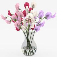 violet 3D models