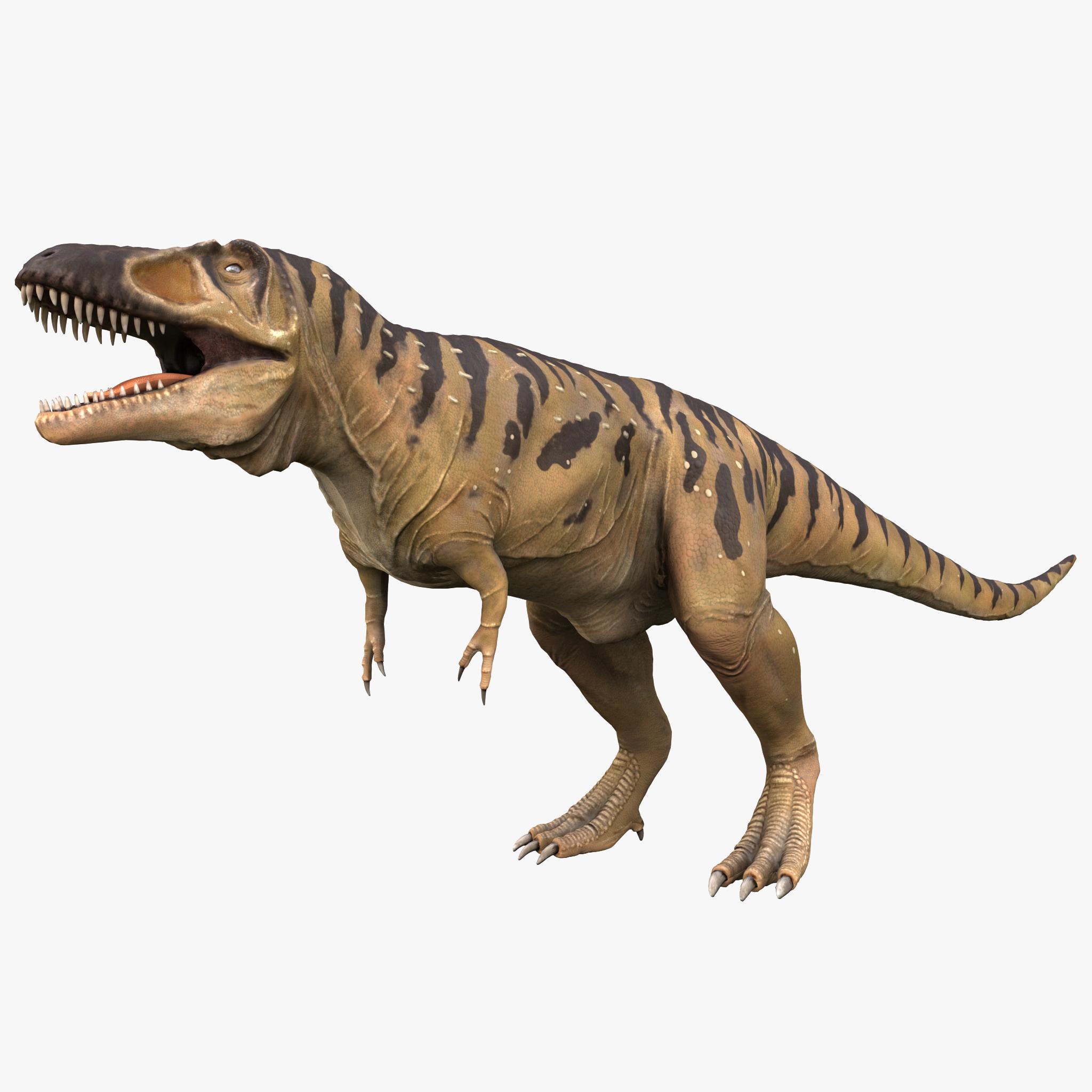 Tarbosaurus Rigged_1.jpg
