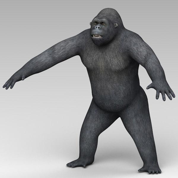 Gorilla Mountain