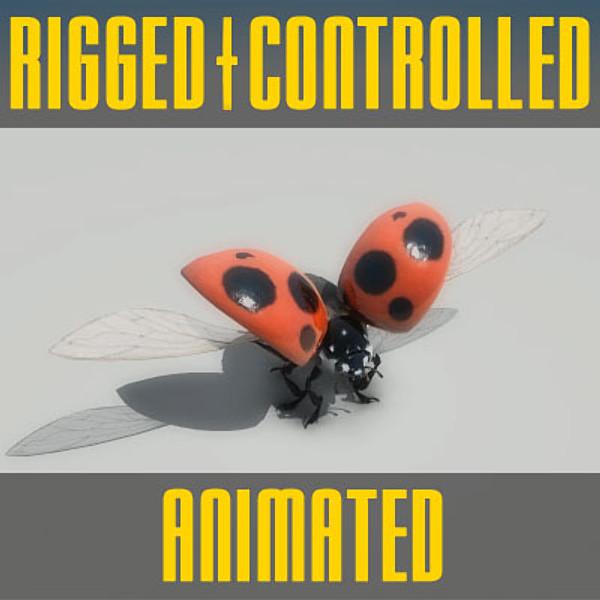 Ladybug Rigged 3D Models