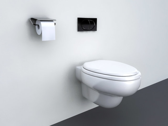 Bathroom Wall Hung Toilet.jpg