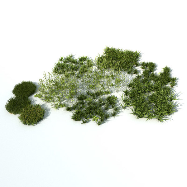 Grass vol2 Texture Maps
