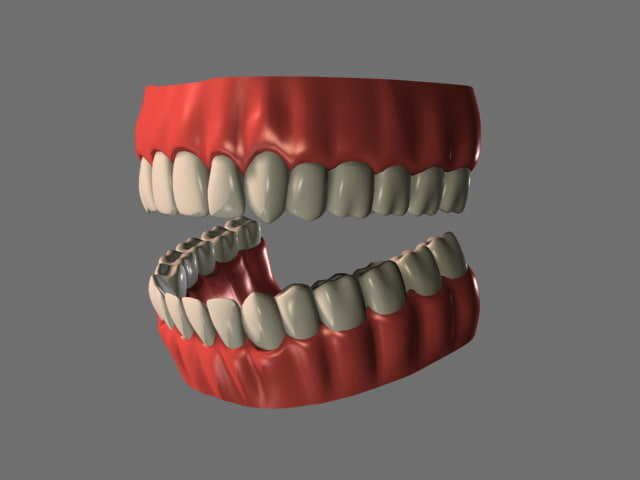 Teeth_Open_Perspective_Light_Smooth_001.jpg