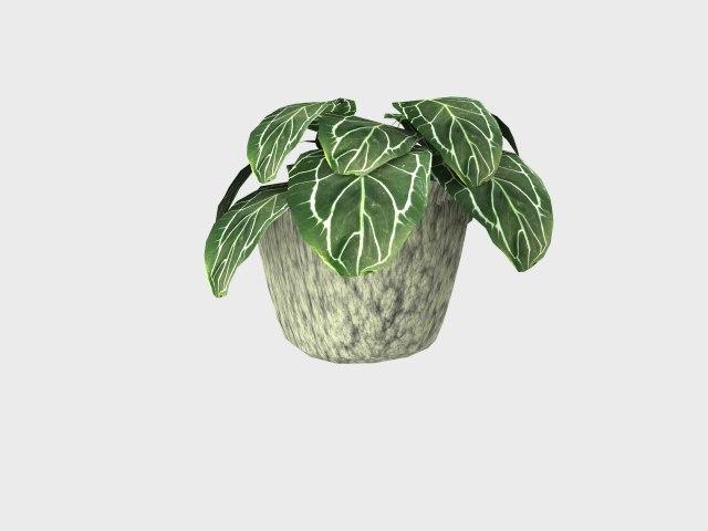 Flowerpot03.rar