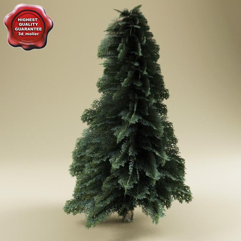 Low_poly_fir_tree_0.jpg