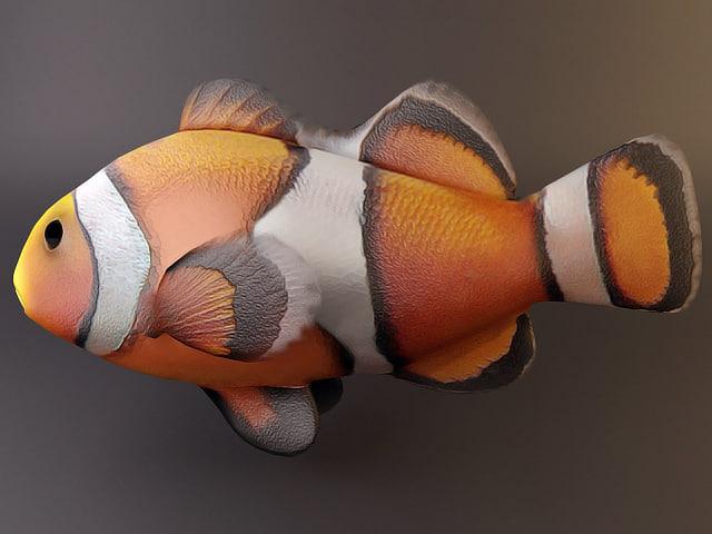 3ds clown fish
