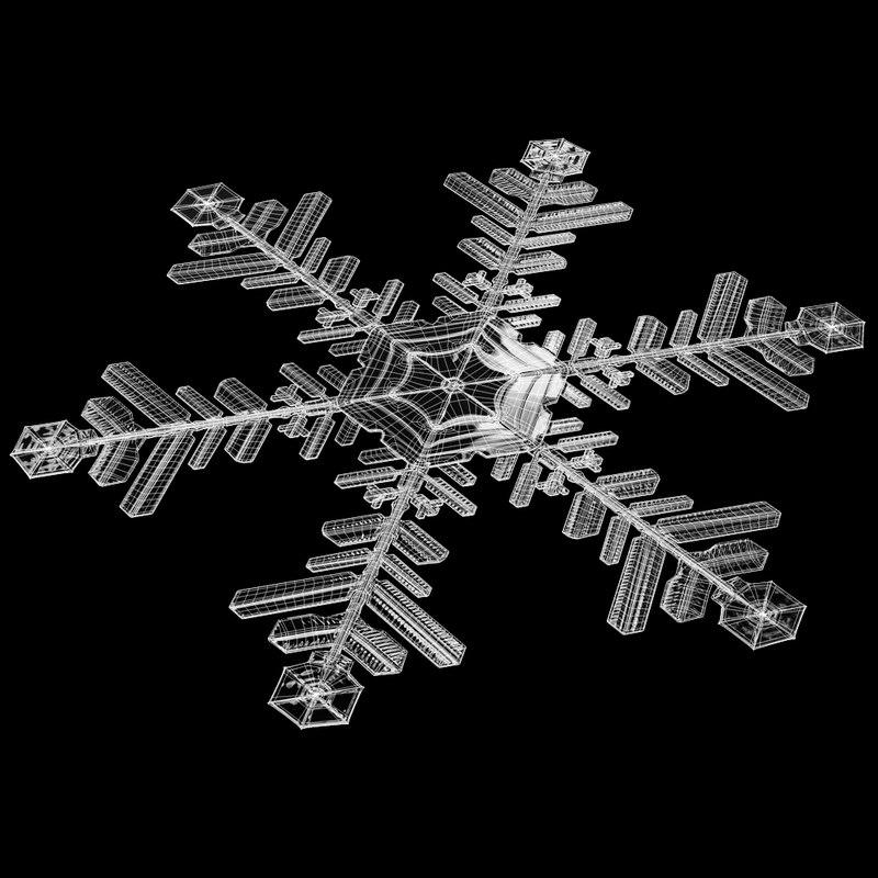 snowflake_01_render_wires.jpg