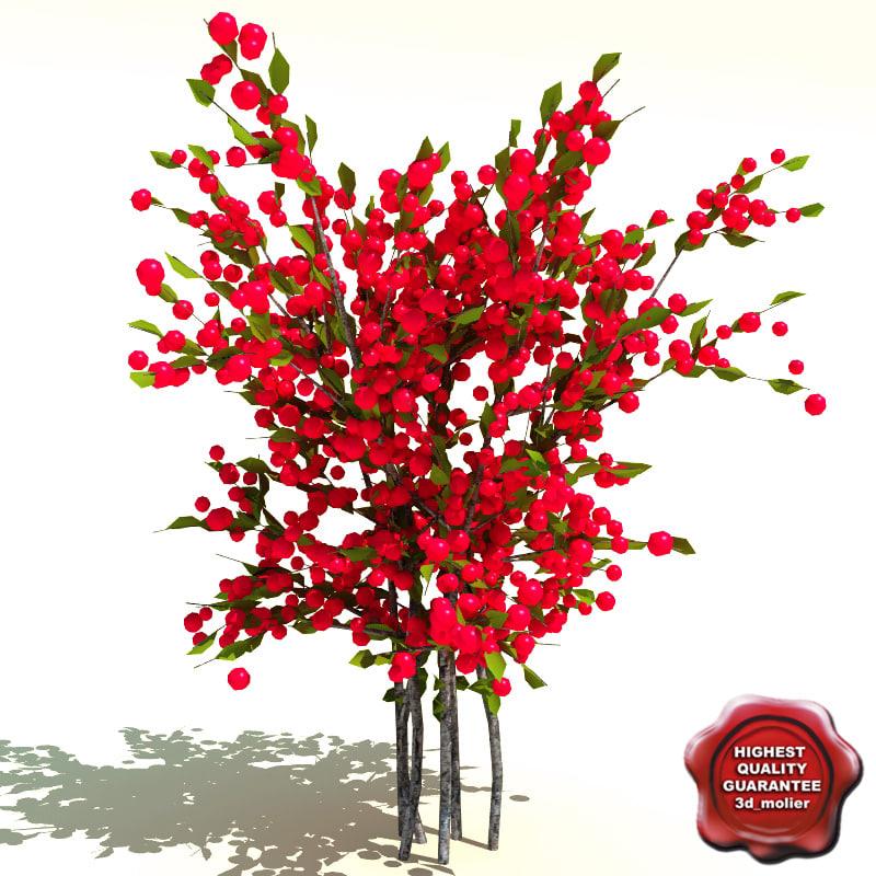 Ilex_verticillata_Red_Sprite_0.jpg