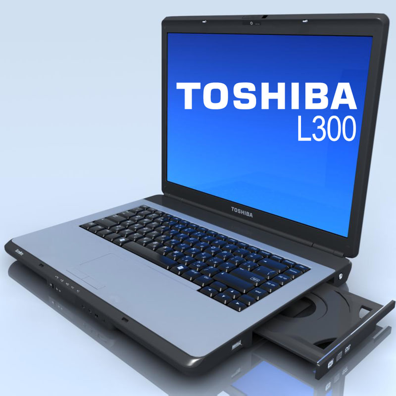 Notebook.TOSHIBA L300.00.jpg