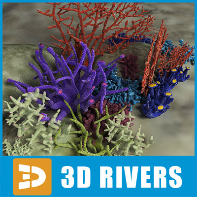 Coral set 02 by 3DRivers 3D Models