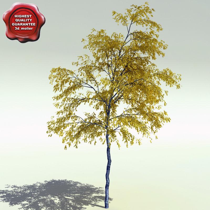 Populus_Tremuloides_0.jpg