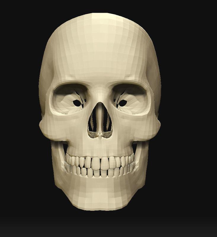 skull_low2.jpg