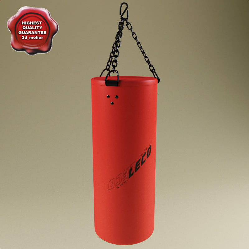 Boxing_Heavy_bag_0.jpg