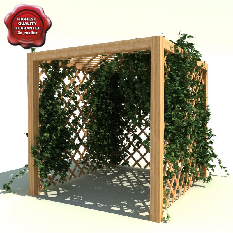 Garden_Pergola_with_ivy_0.jpg