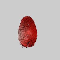 fingerprint 3D models