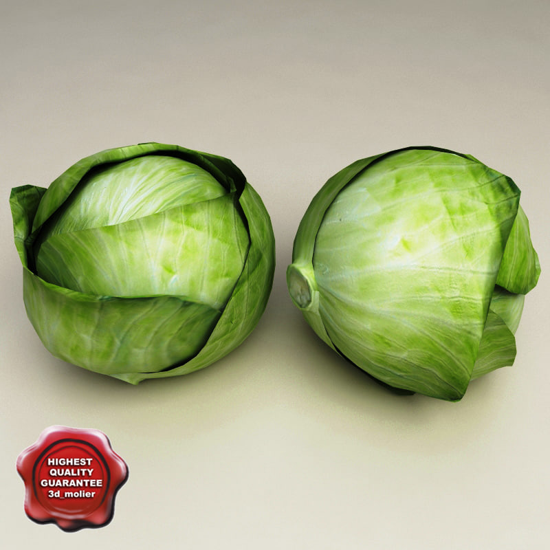 Cabbage_0.jpg