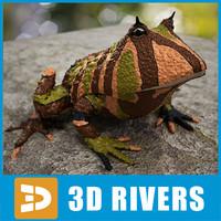 Argentine Horned Frog 3D models