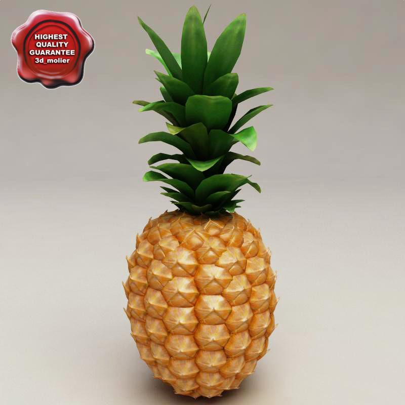 Pineapple_0.jpg
