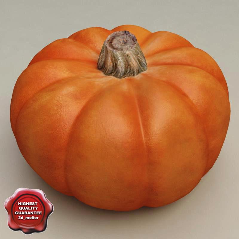 Pumpkin_0.jpg
