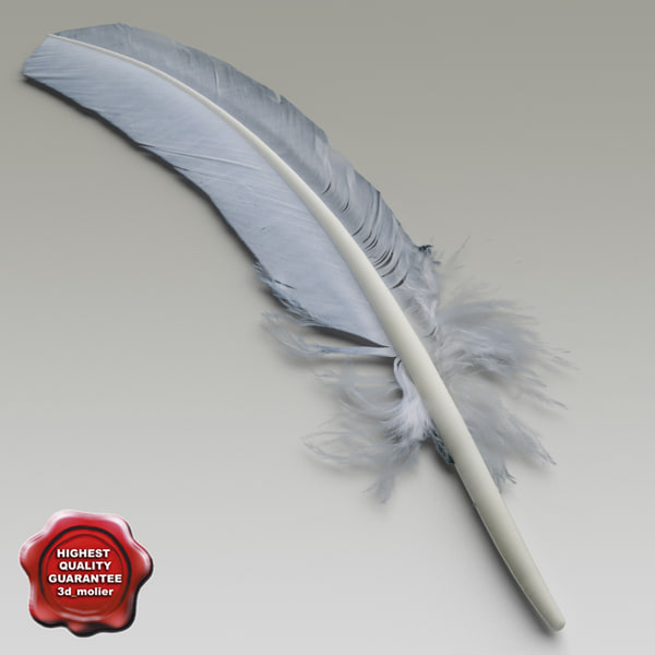 Bird feather V2 3D Models