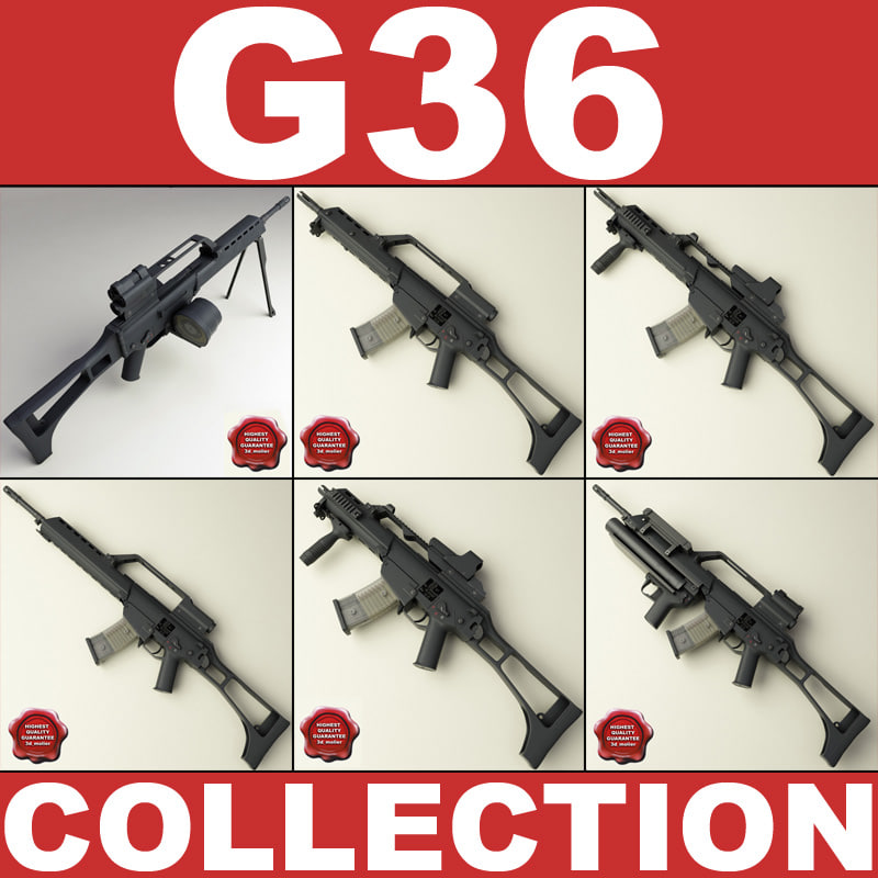G36_00.jpg