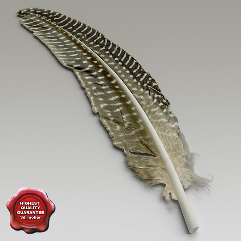 Birds_feathers_11.jpg